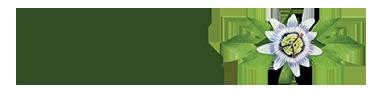 Napfényes Gyógyközpont Logo